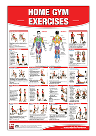 Home Gym Exercises Laminated Poster Chart Home Gym Chart