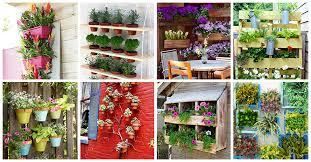 Vertical Garden Design Ideas Interesting Decorating Design