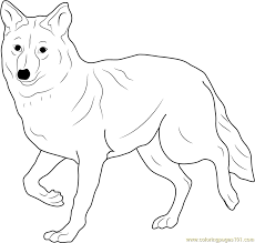 Small Picture Coyote Coloring Page Free Coyote Coloring Pages