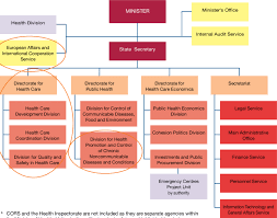 A Organizational Chart Of The Ministry Of Health A
