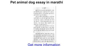 essay writing my pet animal descriptive essay on my favourite