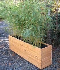 302 best new garden images on narrow planter box