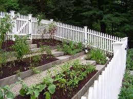 vegetable garden terraced google