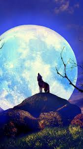 wolf iphone 5 wallpaper. Contemporary Wolf Inside Wolf Iphone 5 Wallpaper L