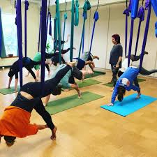 princeton integral yoga insute sport1stfuture org