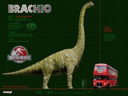 brachiosaurus size image brachiosaurus size jpg dinopedia fandom powered by wikia