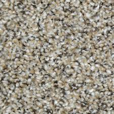 home decorators collection carpet sample nevada color broad