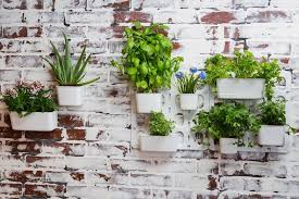 Vertibloom Living Wall Garden Started Kit