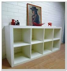 storage cabinets with shelves furniture
