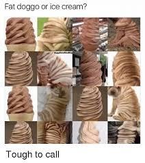 Fat Doggo Or Ice Cream Sapphire Mudki Tough To Call Dank