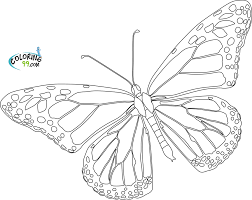 Small Picture Awesome Monarch Butterfly Coloring Page 16 About Remodel Coloring