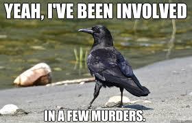 Nonchalant Crow memes | quickmeme via Relatably.com