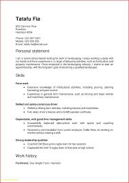 School Leaver Resume Examples Best Of Resume Template Excel Best Templates 23
