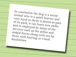 stop animal abuse persuasive essay animal abuse essays and papers 123helpme