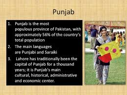 presentation on  punjab 8