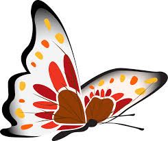 clipart images butterfly white red free image on pixabay