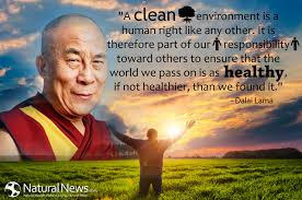 A clean environment is a human right like any other ... via Relatably.com