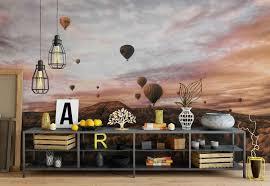 cappodocia hot air balloon wallpaper mural