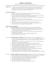 Alluring Project Coordinator Resume Objective On Logistics