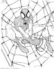 Раскраски человек паук для детей 4 лет