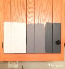 Should I Paint My Kitchen Cabinets White Interesting Design Ideas
