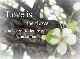 Flowers Love Quotes Inspiration Love Is The Flower You've Got To Let Grow Joy Quote