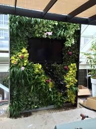 Interior Living Wall by GLTi