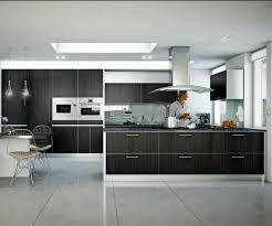 spacious small kitchen design. Design Kitchens Wonderful Modern Homes Ultra Kitchen Designs Ideas Spacious Small
