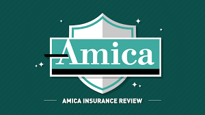 Amica Insurance Quote Magnificent Amica Insurance Review Quote