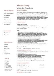 Marketing Consultant Resume Example Sample References Job