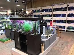 aquariumplanten en vissen
