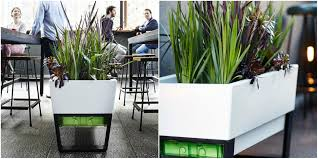 perfect office plants. Office Pots The Easiest Way To Dress Up With Best Plants. Perfect Plants