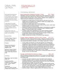 Marketing Consultant Content Developer Resume Brooklyn Resume