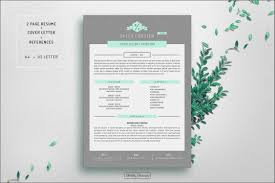 Lovely Free Resume Templates For Mac Pages Your Story