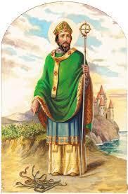 Znalezione obrazy dla zapytania irlandia symbole