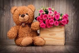 flower teddy bear wallpapers top free