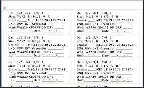 Raffle Ticket Template Excel New Free Editable Raffle Movie Ticket