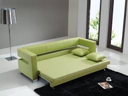pull out sleeper sofa bed has one of the best kind of other is clack