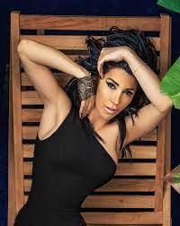 Hande Yener - Sänger