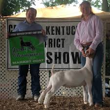 Central KY District Show | The Pulse