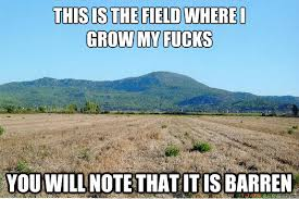 This is the field where i grow my fucks you will note that it is ... via Relatably.com