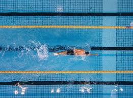 12 week swim workout plan for sprint
