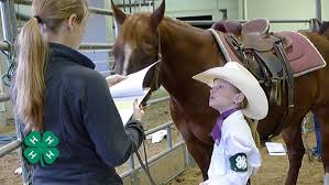4 H Horse Project Resources Nebraska Extension In Lancaster County