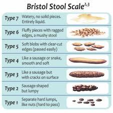 Cat Stool Chart Bristol Stool Chart Bschart Twitter