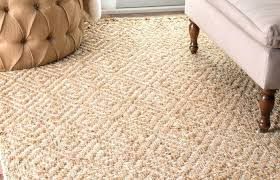 living room scheme decoration medium size country style beige area rugs unique blue braided bun