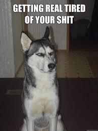 Grumpy Dog memes | quickmeme via Relatably.com