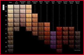 Hair Cellophane Color Charts Phenomenal Sebastian Cellophane Hair Color Chart Images