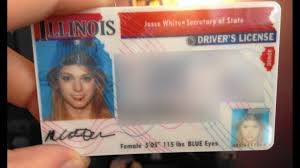 Of Illinois Secretary Secretary State Illinois Of State Of Secretary Secretary State Illinois Of