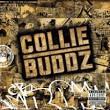 Collie Buddz album by Collie Buddz