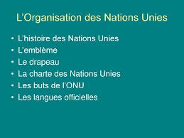 L Organisation Des Nations Unies